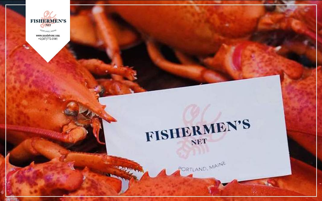 Get your best and freshest lobsters at Fishermen's Net, Portland, Maine
