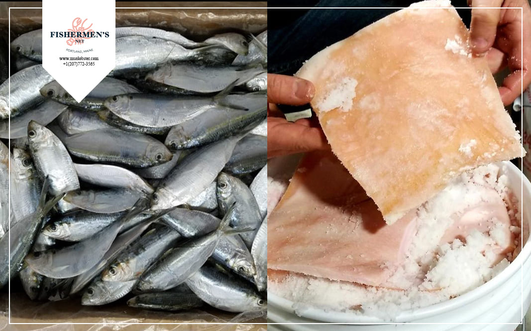 You can use salted herring or pig hide for lobster bait