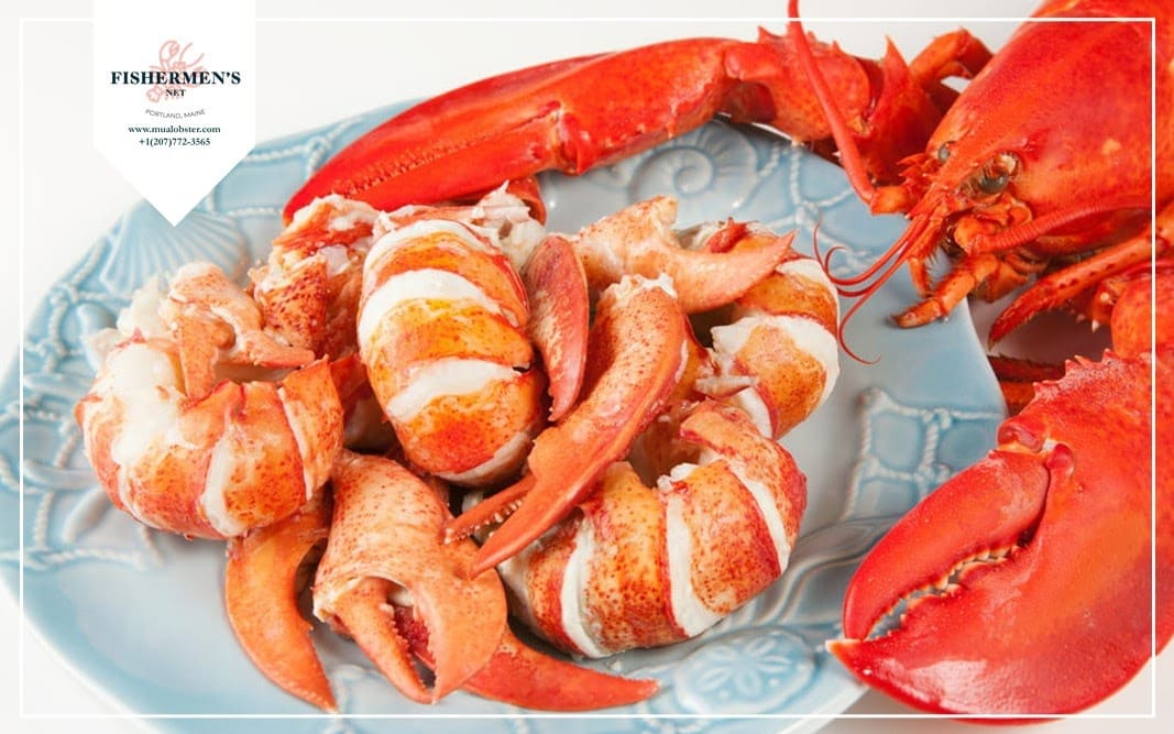 How to buy lobster meat