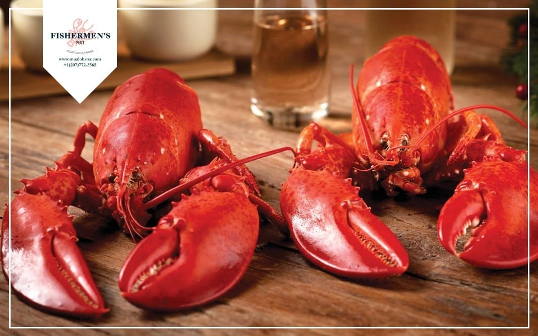 How to eat a whole lobster?