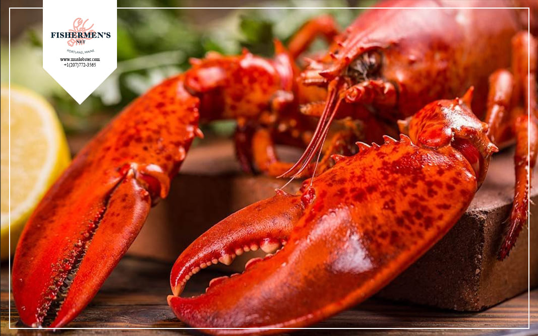 How to reheat lobster to taste just as good the next day?