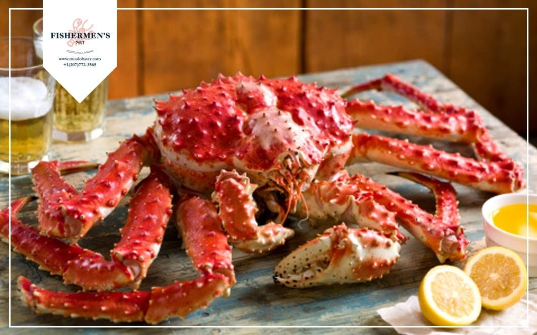 King Crab shell is typically covered in spikes, and is much harder than Snow Crab