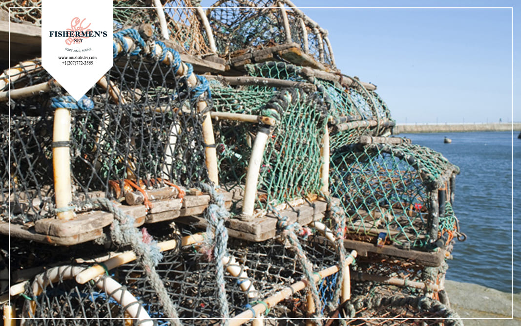 The traditional design of the lobster trap