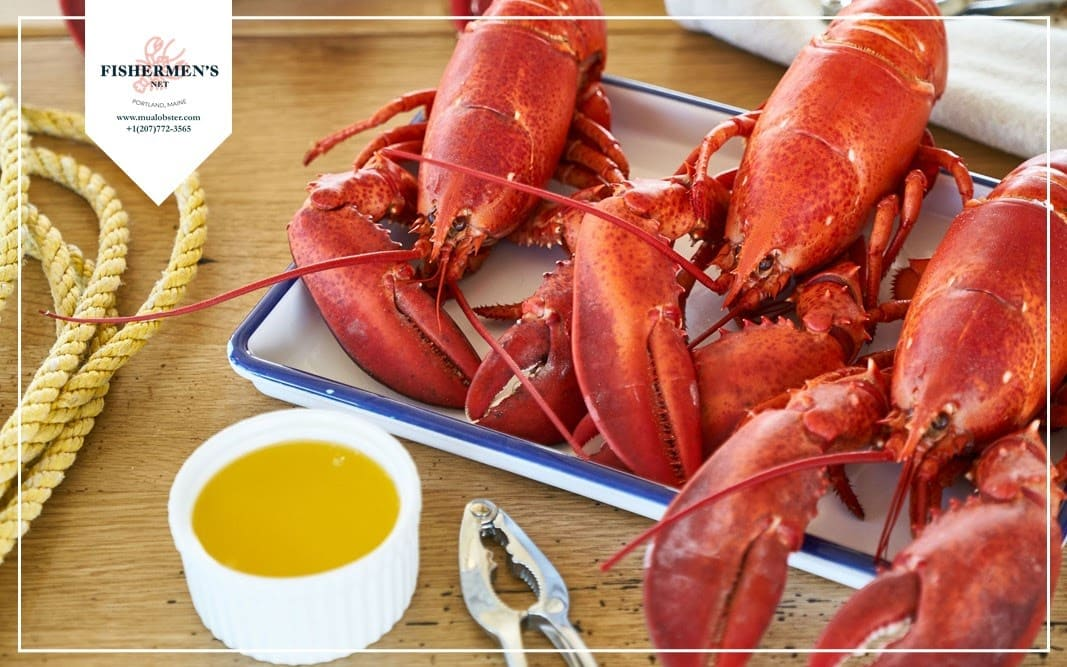 Lobster is the best in summer