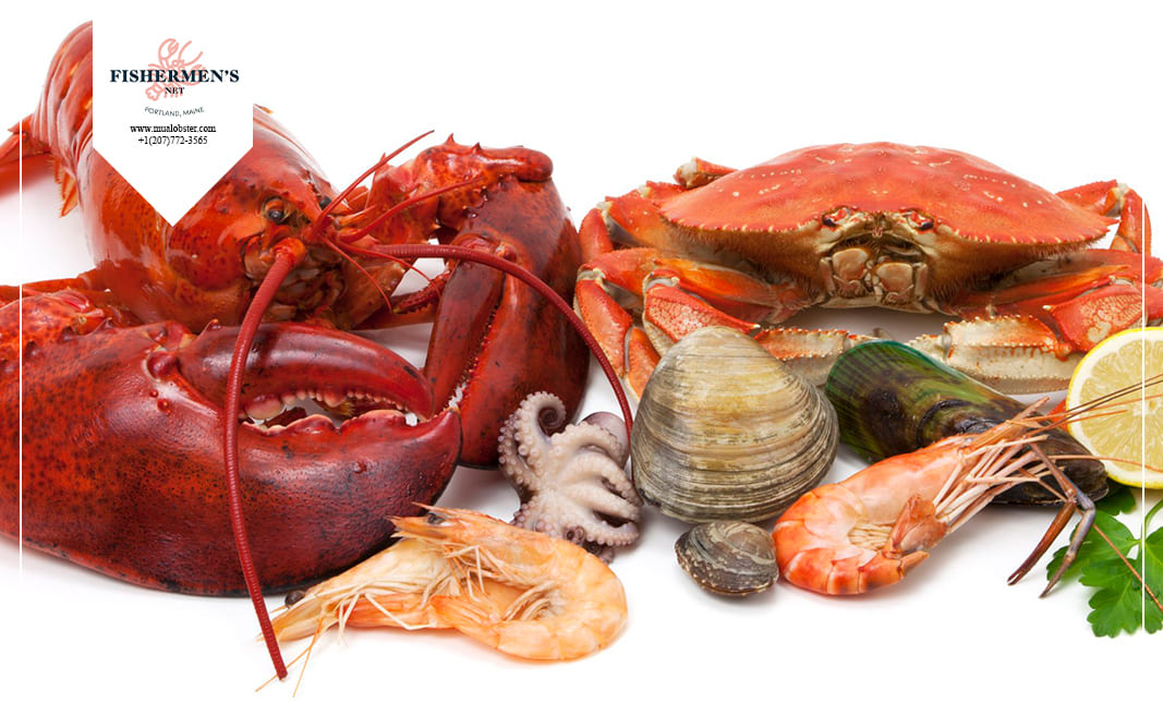 what does lobster most taste like
