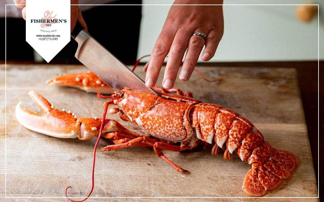 When is the national lobster day?