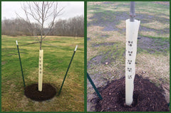 Tree Pro Tree Protection Systems
