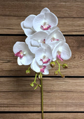 "ITEM 00970 WLV - 27.5"" WHITE LAVENDER PHALAENOPSIS ORCHID SPRAY WITH COATING"