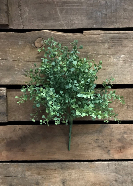 "ITEM 11222 - 12.75"" MINI BOXWOOD BUSH X 6"