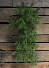 "ITEM 11232 - 30"" SPRINGERI HANGING BUSH X 8"