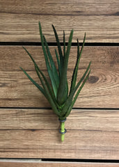 "ITEM 11249 - 12"" REAL TOUCH ALOE PLANT"
