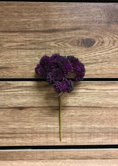 "ITEM 11252 PUR - 9"" PURPLE REAL TOUCH SEDUM PICK"