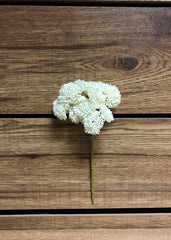 "ITEM 11252 W - 9"" WHITE REAL TOUCH SEDUM PICK"