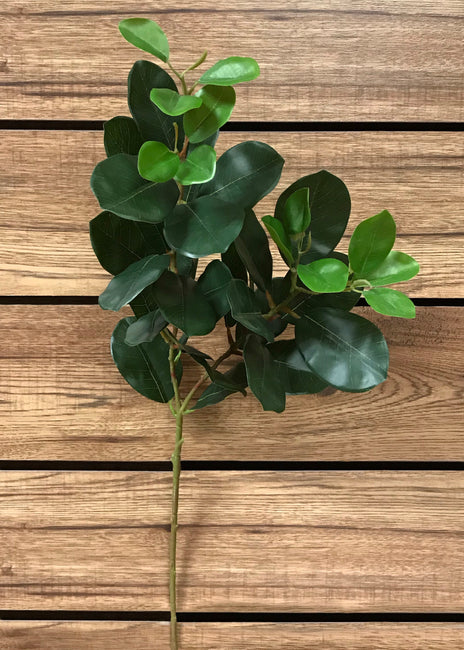 "ITEM 11302 - 31"" ORIENTAL FICUS SPRAY X 2"