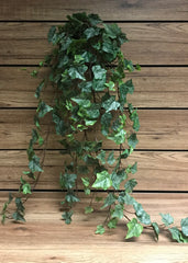 "ITEM 12222 - 40"" FROSTED GREEN ENGLISH IVY BUSH WITH 244 LEAVES"