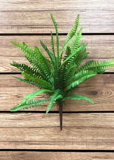 "ITEM 12230 - 19"" BOSTON FERN BUSH"
