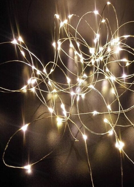 ITEM 1289 WARM - 36' - 100 WARM WHITE MICRO LIGHTS ON SILVER WIRE WITH TIMER FUNCTION