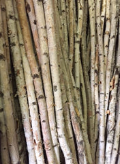 ITEM 249 -  3 FOOT NATURAL BIRCH POLE