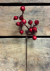 "ITEM 81080 -  7"" RED OUTDOOR BERRY PICK - 24 PER PACKAGE"