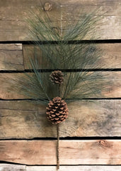 "ITEM 81140 -  24"" PINE / CONE SPRAY"