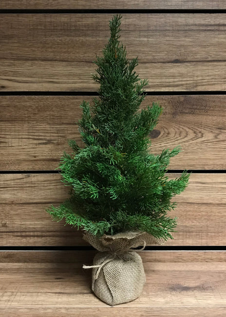 "ITEM 81273 - 19"" GREEN CEDAR TREE WITH BURLAP BASE"