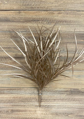 "ITEM 81358 CH - 17"" CHAMPAGNE GRASS BUSH"