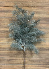 "ITEM 81436 - 28"" HIMALAYAN FROSTED PINE SPRAY"