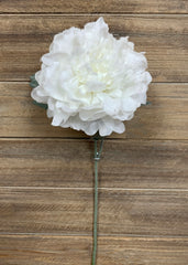 "ITEM 81453 - 23"" SNOWY PEONY SINGLE SPRAY"