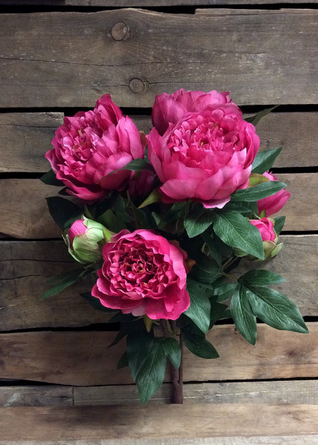 "ITEM 10135 ROSE - 22.5"" ROSE PEONY BUSH WITH 9 HEADS"