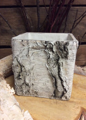 "ITEM MX031435 - 6""SQ CEMENT BIRCH PLANTER"