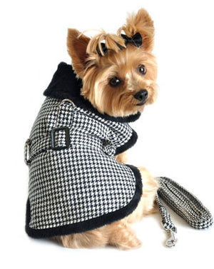 image of dog wearing harness coat with leash