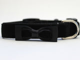 image of dog collar
