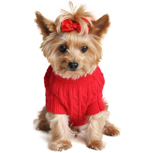 image of dog wearing sweater