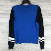 Treasure & Bond Stripe V-Neck Sweater