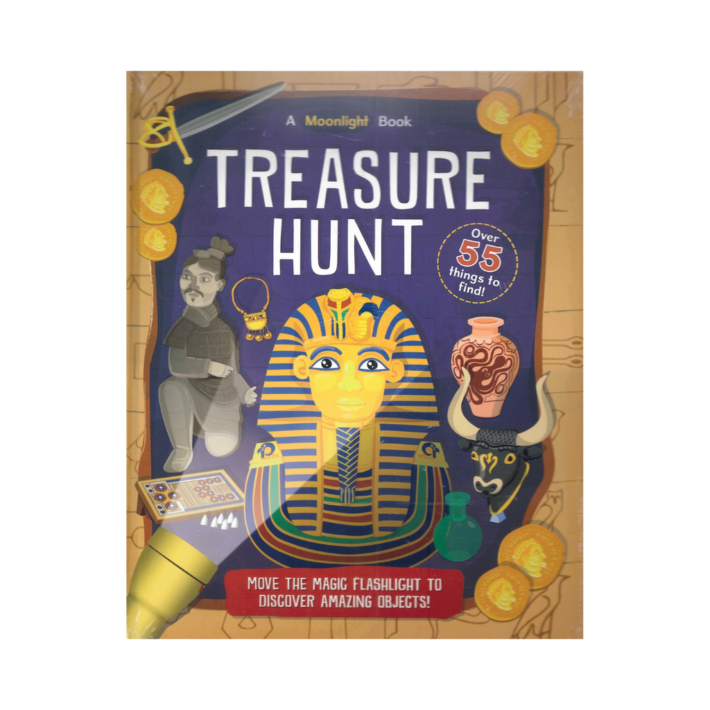 Torch Book: Treasure Hunt (Hardback)