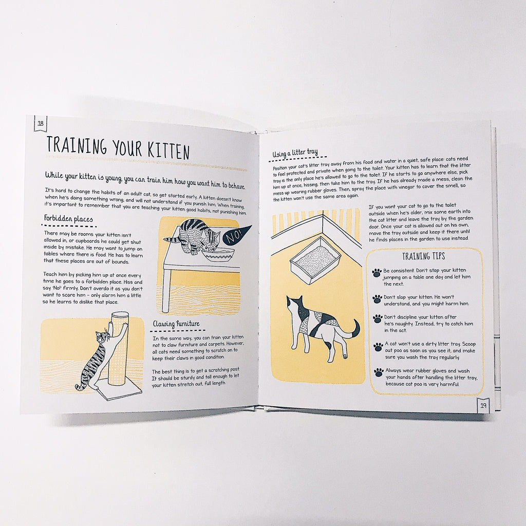 How to Look After Your Kitten (Hardback)