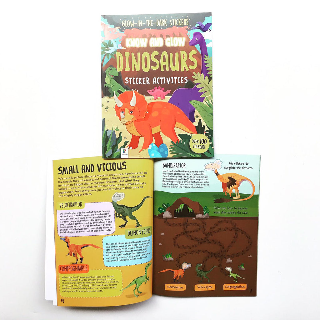 Know and Glow: Dinosaurs (Paperback)