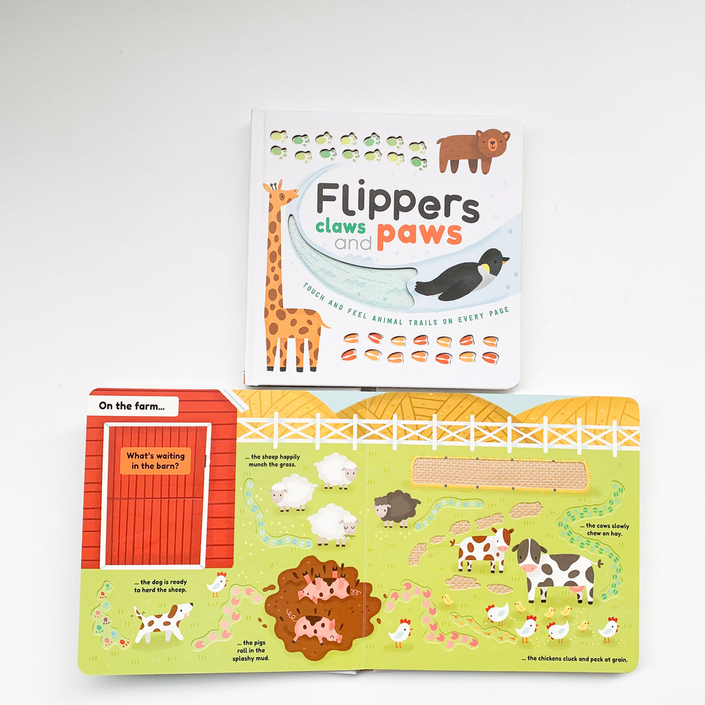 Touch And Feel : Flippers, Claws And Paws (Board Book)