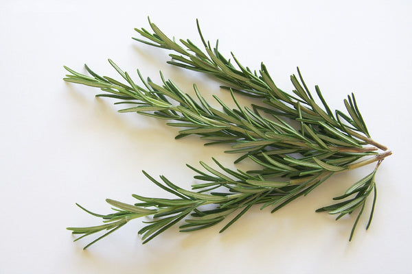 How to use Rosemary essential oil