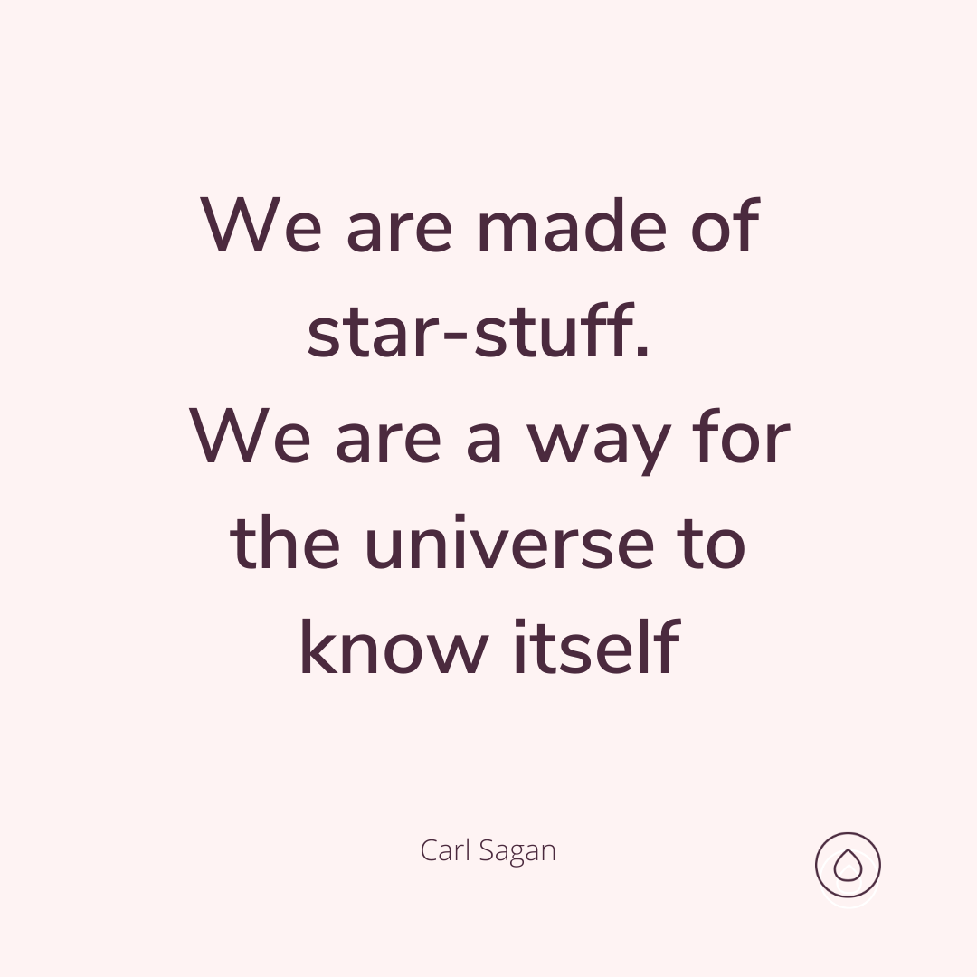We are a way for the universe to know itself