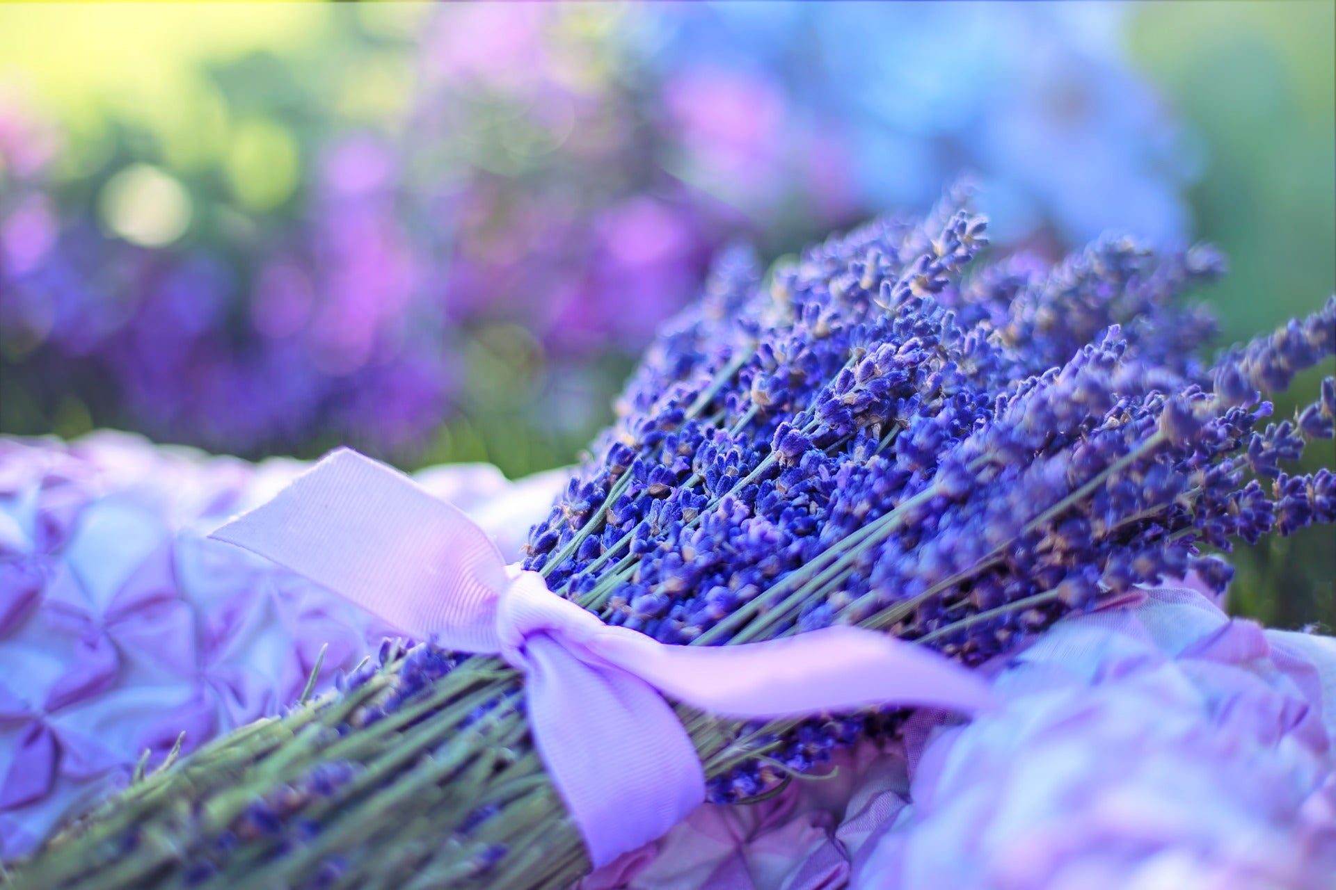 Lavender essential oil has calming properties