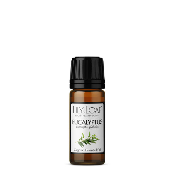 Eucalyptus Organic Essential Oil 10ml - All Over The Drop