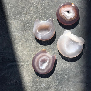 Shaped Agate Plates - Bear