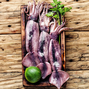 Frozen Squid Whole  Thondi