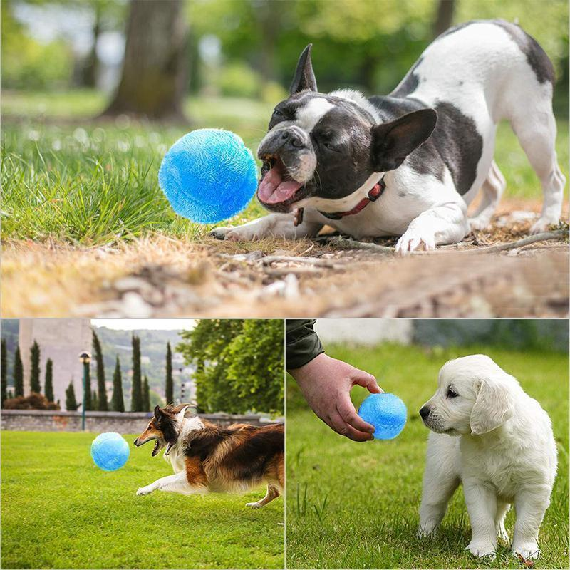 Hirundo® Magic Ball for Dogs