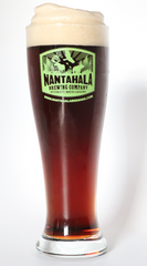 Nantahala Brewing Pilsner Glass