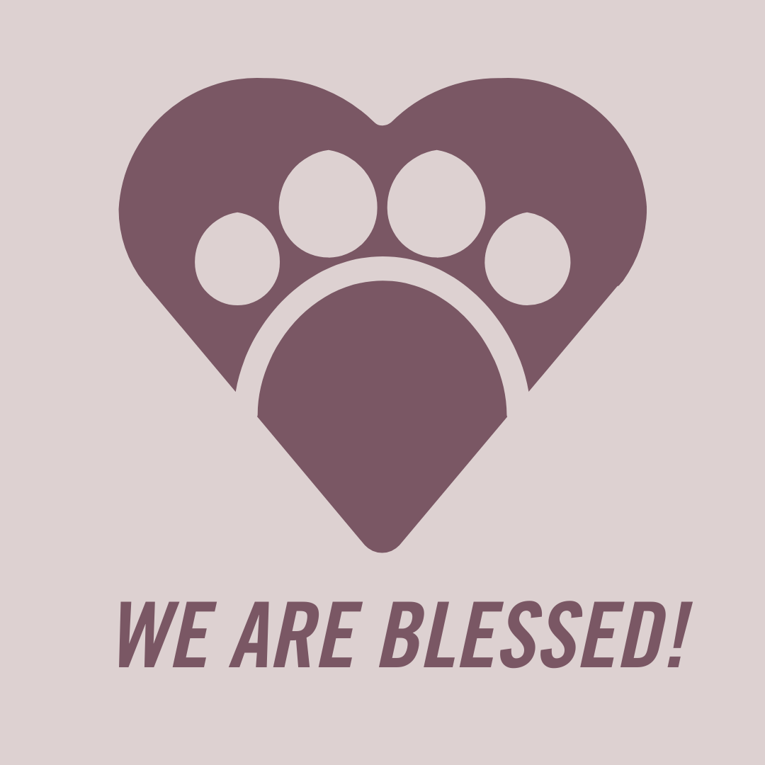 We Are Blessed: Taking