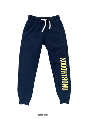 BT- Navy Gold Spectrum Sweats [x-small] R13
