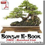 Books pdf bonsai