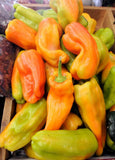 Cubanelle Sweet Pepper - Capsicum Annuum - 20 Seeds